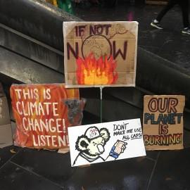 2020-01-09-Climateemergency-bushfires-Rally-09